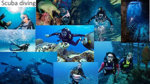 1-scuba-diving