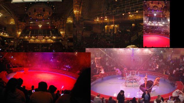1 circus